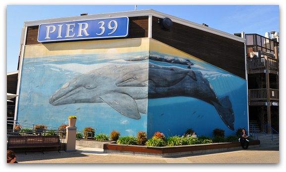 Pier 39 San Francisco Fishermans Wharf