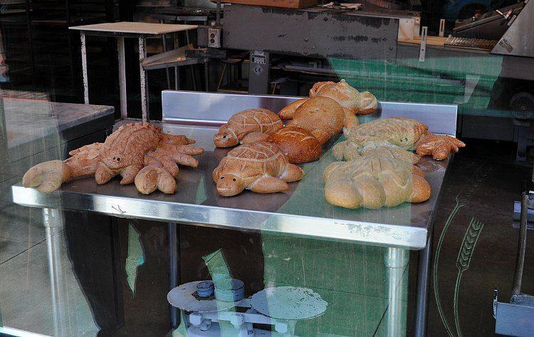 November in SF at Boudin Bakery