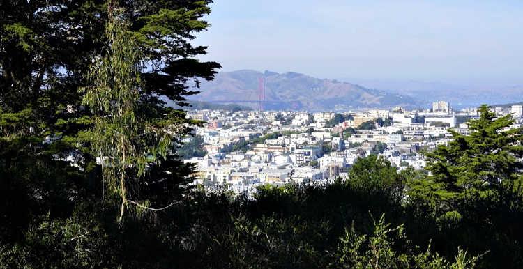 Buena Vista Golden Gate Bridge