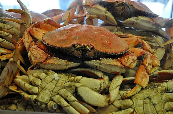 Crabs in Fish Alley