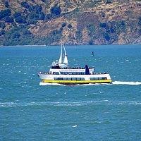 Cruises in September