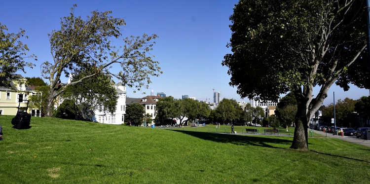 Views of downtown SF from Duboce Park