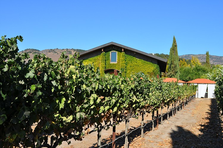 Events in Napa in August