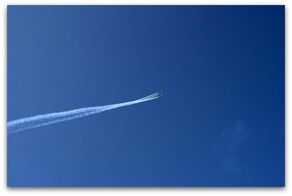 blue angels over the san francisco bay