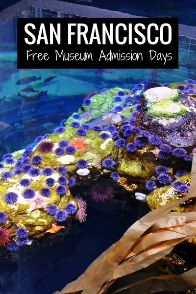Calendar of Free Museum Admission in SF