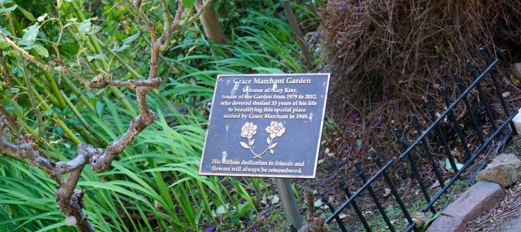 Grace Merchant Gardens
