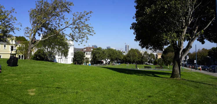 Green Lawn of Duboce Park