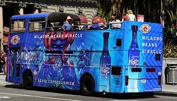 City Bus Tours
