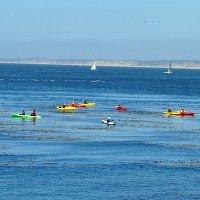 Kayaking SF