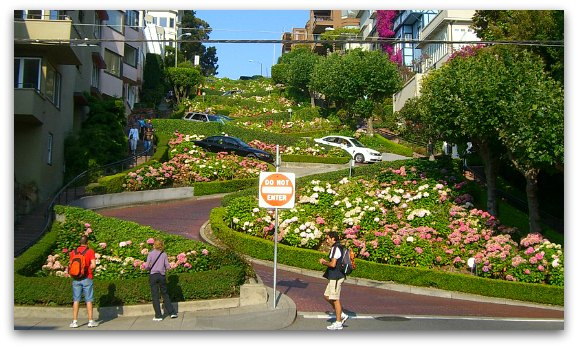 lombard street in bloom