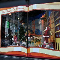 Macys Windows
