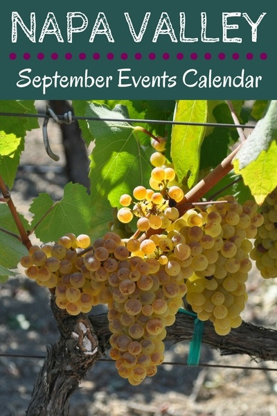 Napa Events in September: Wine Tasting, Festivals, Music, and More