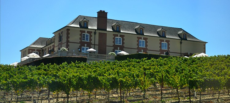 Napa Winery on the Hill