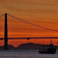 Night Cruise in SF