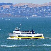 November Cruises