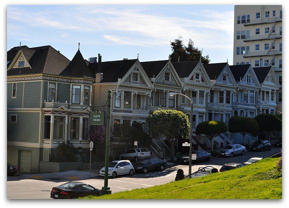 Painted Ladies May
