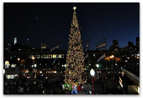 pier 39 tree - Bay Area Christmas Lights