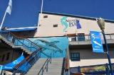 sf bay aquarium