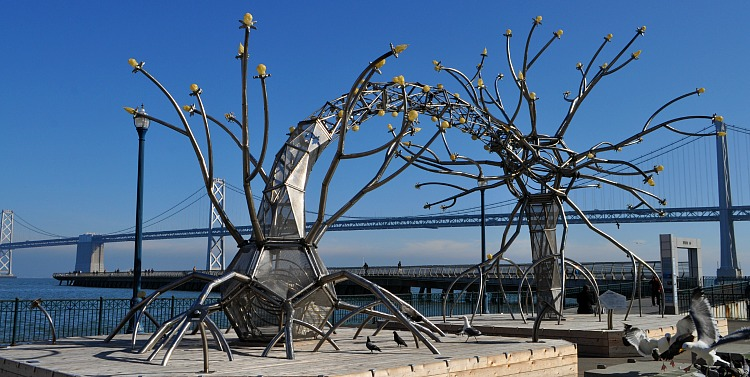 San Francisco in February: Outdoor Art on a Sunny Day