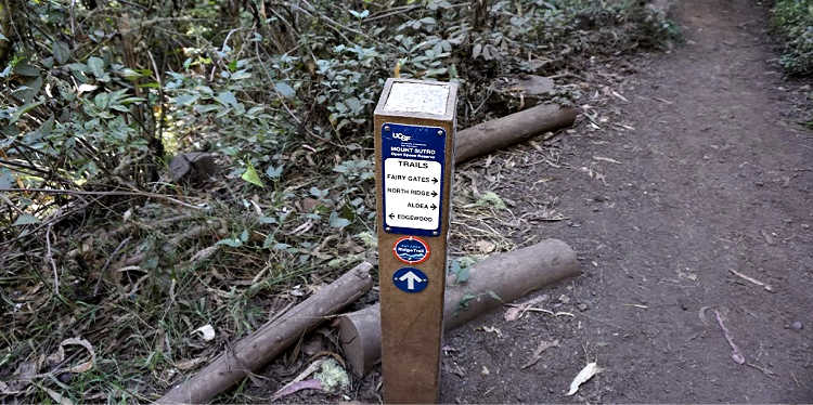 Trail Sign on Mount Sutro