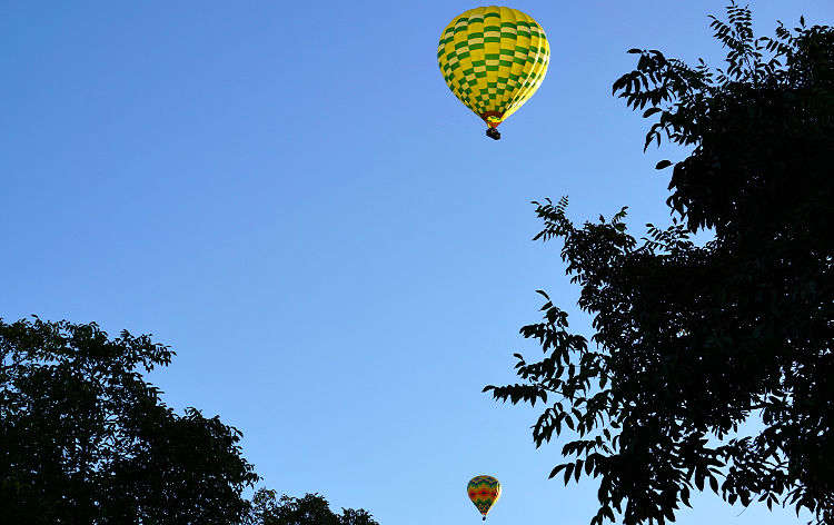 Two Balloons Over Napa Valley