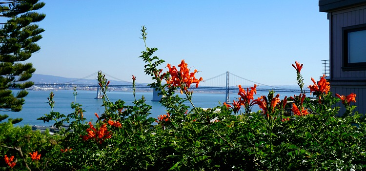 Views of the Bay Bridge from the Filbert Stairs