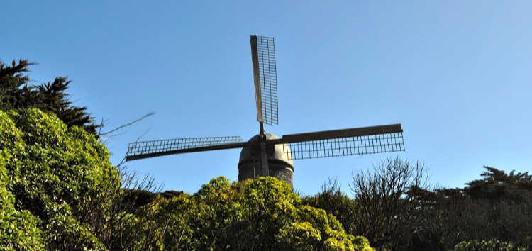 Windmill in Outer Sunset
