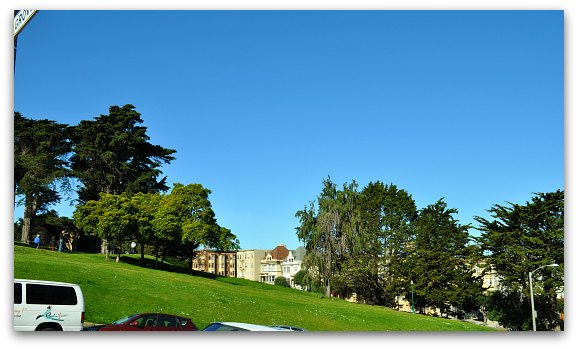 Alamo Square Park from Steiner