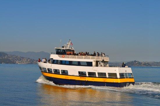 blue gold ferry sf