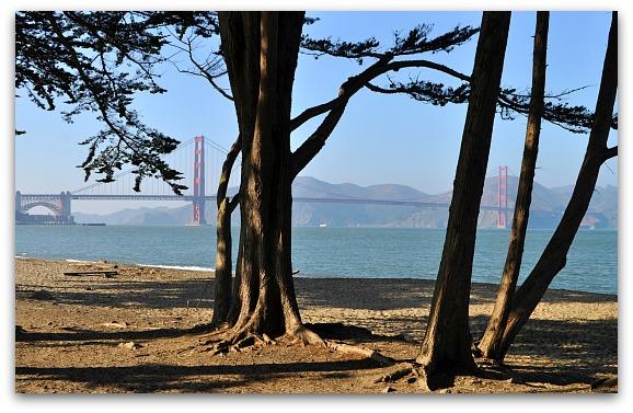 Crissy Field in SF