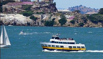 Cruises in February