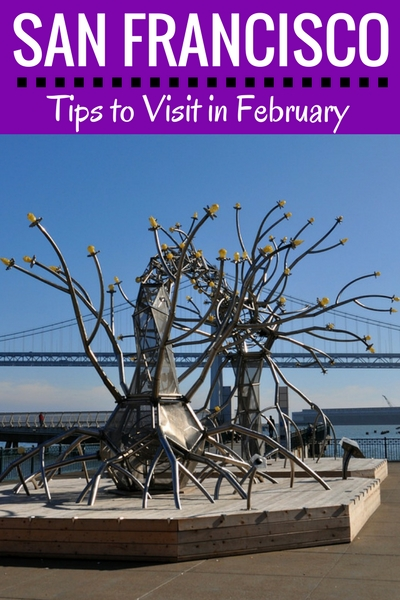 February in SF: What to Do, What to See, & Other Fun Things to Do
