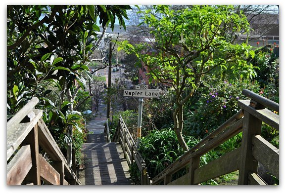 Napier Lane Stairs