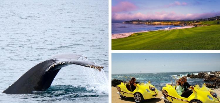Outdoor Activities in Monterey