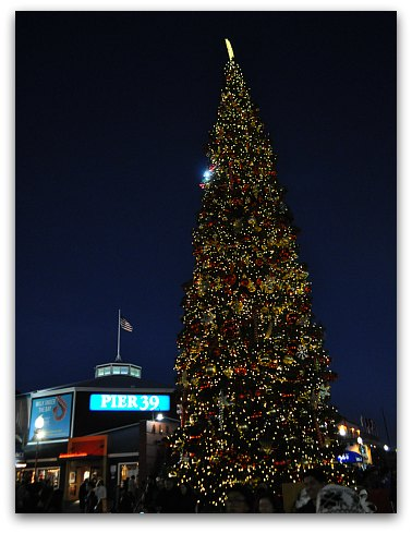 Pier 39 Christmas Tree at Night