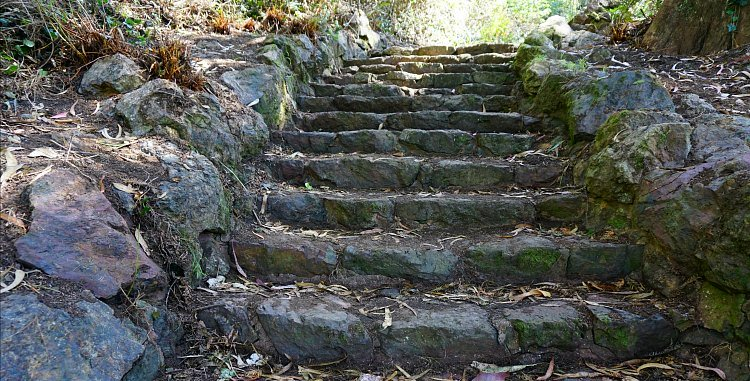 Stairs to the trails