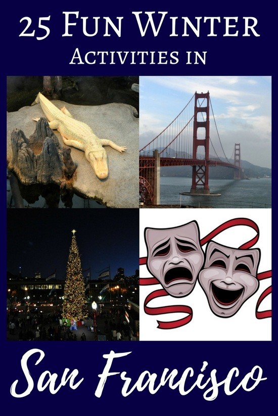 Things to Do in San Francisco in the Winter: 25 Fun Ideas