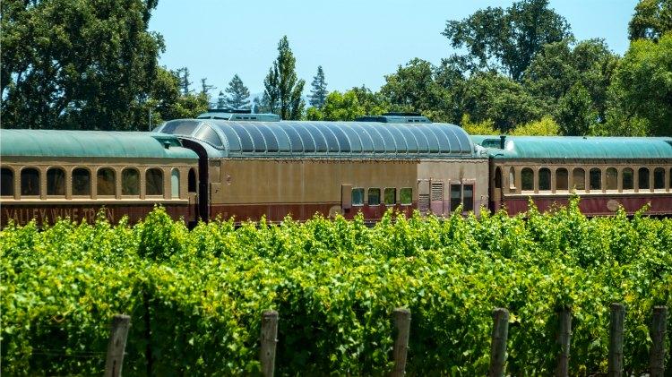 Vineyards Near the Wine Train