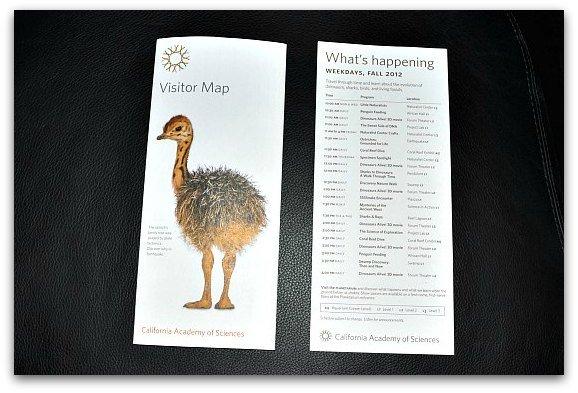 visitors map at museum