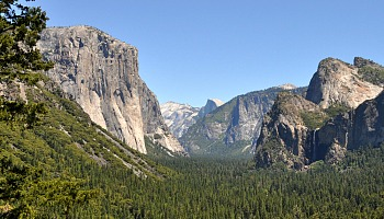 Yosemite July Tours