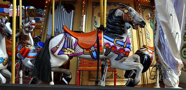A single horse on the historic carousel on Pier 39 in San Francisco.