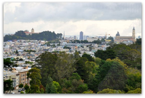 A view of downtown San Francisco from the de Young Observation Deck in Golden Gate Park