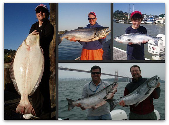 Recent catches from charters on Executive Charter Fishing Trips