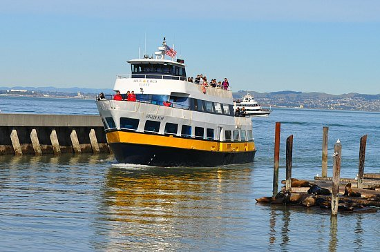 Ferry coming from Sausalito in Fishermans Wharf.