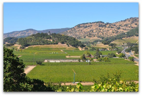 A look from above of Napa Valley vineyards