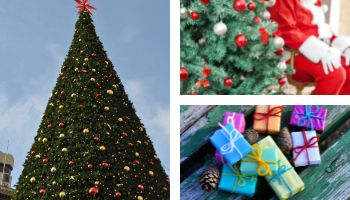 San Francisco Christmas Events 2021 Christmas In San Francisco 2020 Outdoor Activities This Year