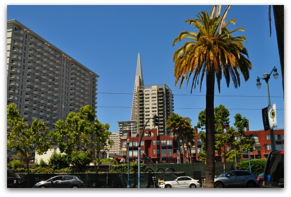 The Transamerica building in downtown SF