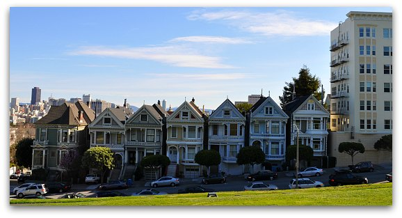 Painted Ladies in the Morning