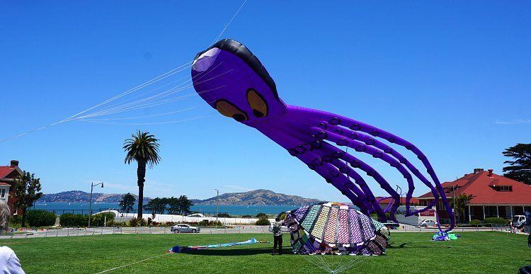 Kite Festival with clear skies in June