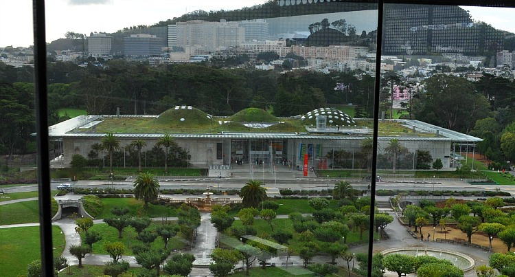 A view of the California Academy of Sciences from the tower at the de Young across the street.